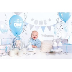 1st BIRTHDAY party set